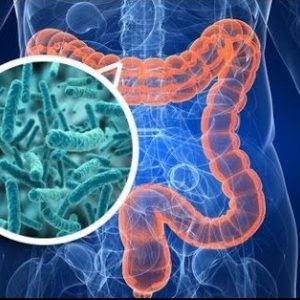 importancia-microbiota