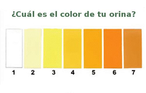 color_orina