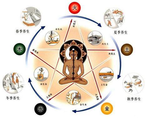 medicina_tradicional_china