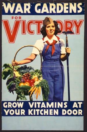 cultivar_vitaminas