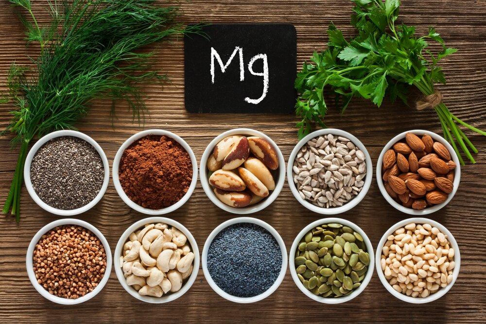 fuentes magnesio