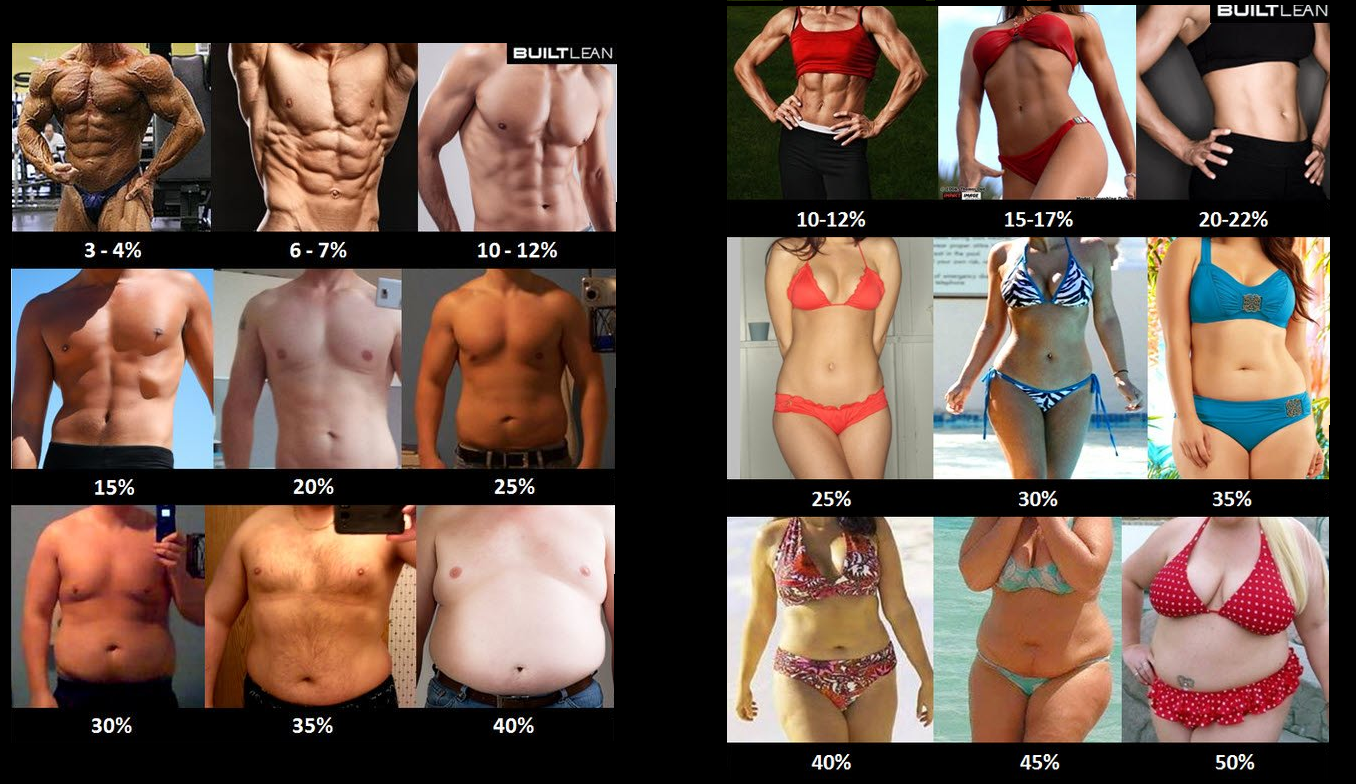 grasa-hombres-mujeres